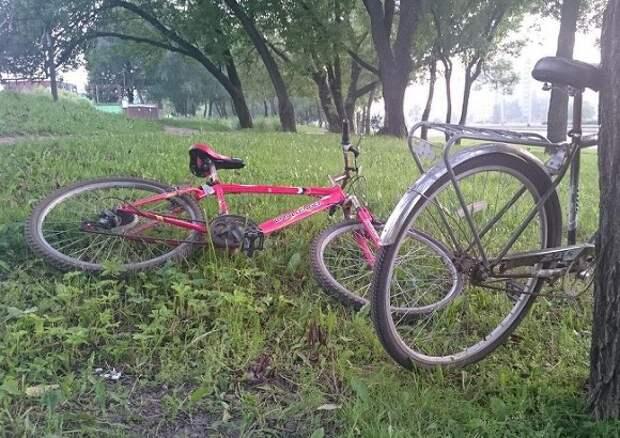 В петербургском парке велосипедист сбил подростка