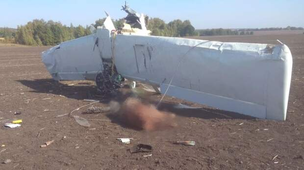 Пилот разбившегося в Татарстане самолета налетал 3250 часов за карьеру