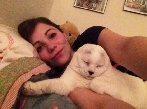 Старый кот без ушей для его новой мамы просто прекрасен