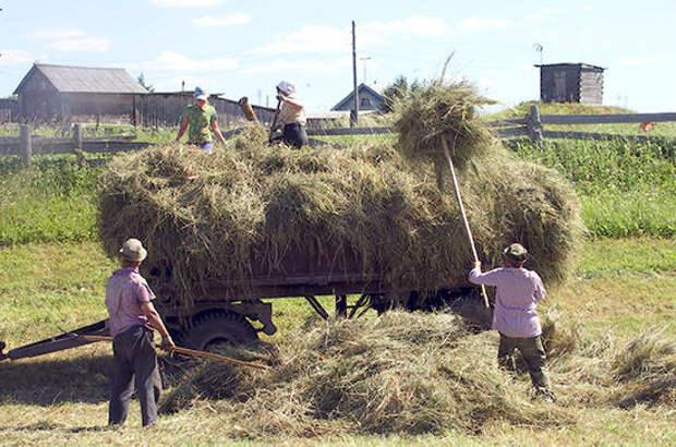 Сельский туризм в России может получить новые стимулы для развития