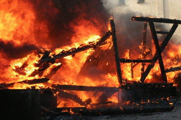 Кот спас семью от смерти в огне. Дом сгорел дотла