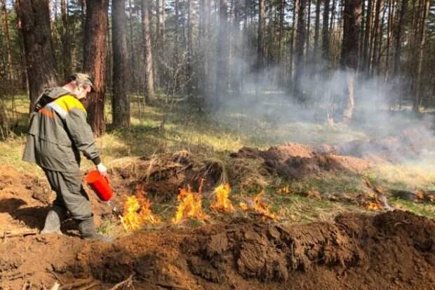 В регионе введен особый противопожарный режим