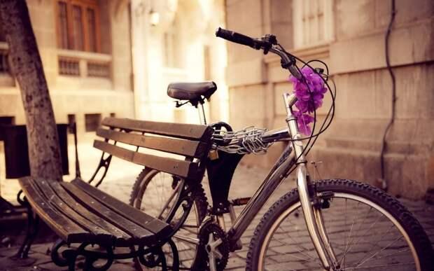 Кражу велосипеда раскрыли в Лосиноостровском районе.Фото: из открытых источников