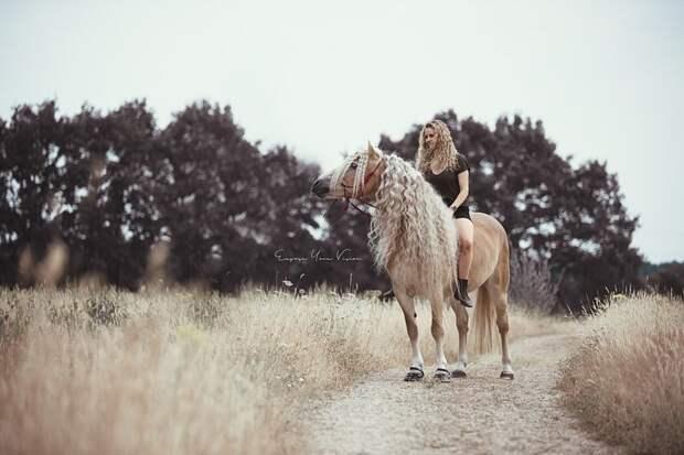 Это Наоми Бекер из Эйндховена, Голландия. А сидит она на невероятной красавице голландия, девушка, животные, красота, лошадь, фото, шевелюра