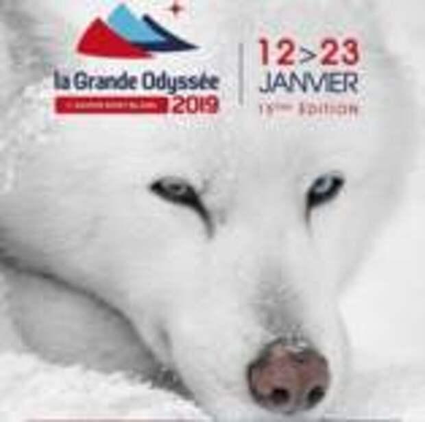 В Межеве состоится этап одной из самых сложных гонок на собачьих упряжках