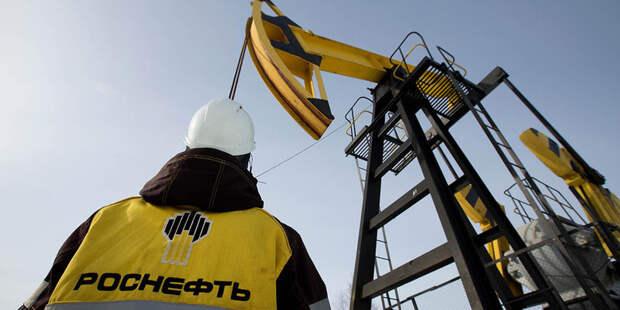 «Роснефть» начала изучать ТРИЗ углеродов в Оренбургской области