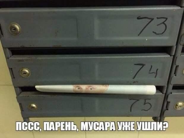 1449899774_1449749568_raznoobraznaya_4-50