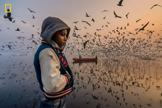 26 лучших фото по версии National Geographic. В них смешались фантастическая красота и беспощадный драматизм