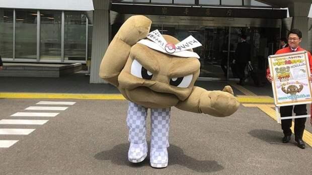 Рыбки в стоках, мусоросжигательные кафе и еще 12 причин, по которым Япония уникальна