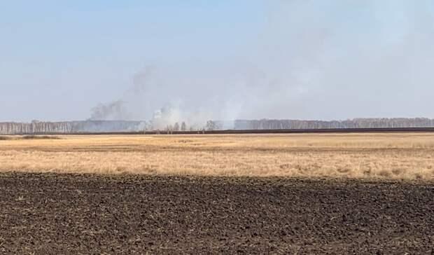 За сутки в Ишиме обнаружили 12 очагов возгорания