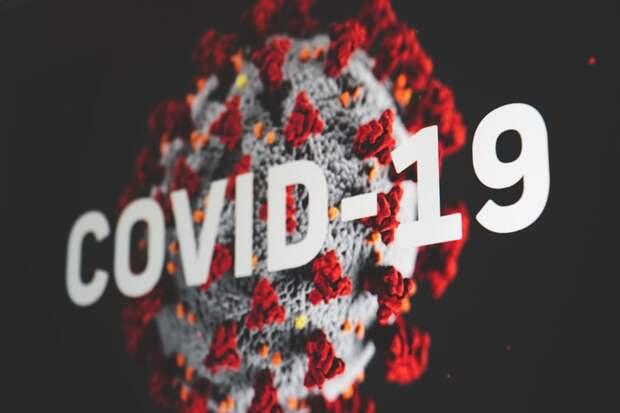 Биолог рассказала, когда заболеваемость COVID-19 в РФ должна пойти на спад