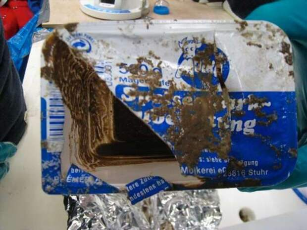 Что происходит с пластиковыми пакетами, выброшенными в воду? (3 фото)