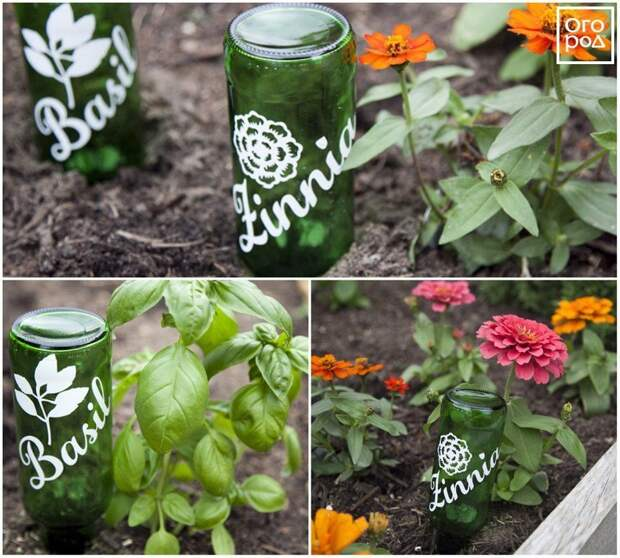 Маркеры для растений из бутылок