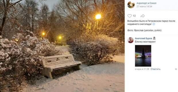 Фото дня: зимняя эстетика в Петровском парке