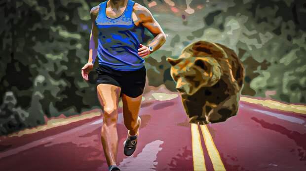 Медведь в национальном парке США преследовал бегуна до машины