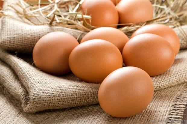 Из истории яйца