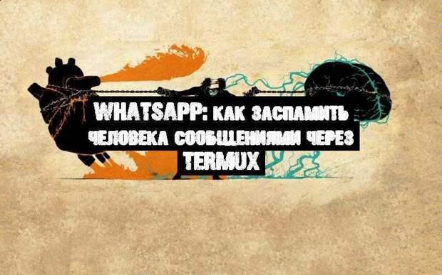 Whatsapp: как заспамить человека сообщениями через Termux