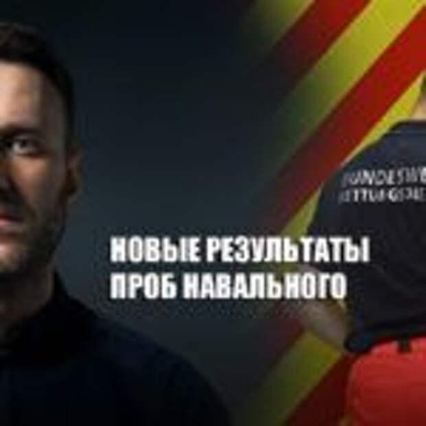 Европейские специалистыобнародовали повторные исследования проб Навального