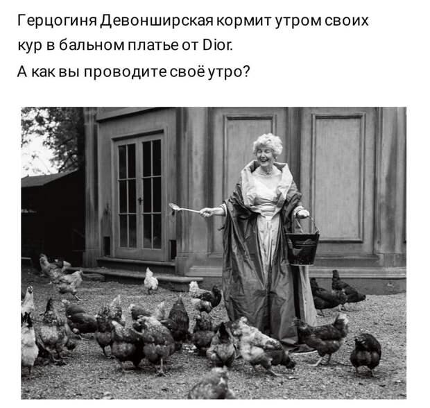 Утром мама собирает дочку в детский сад. Дочка спрашивает её...