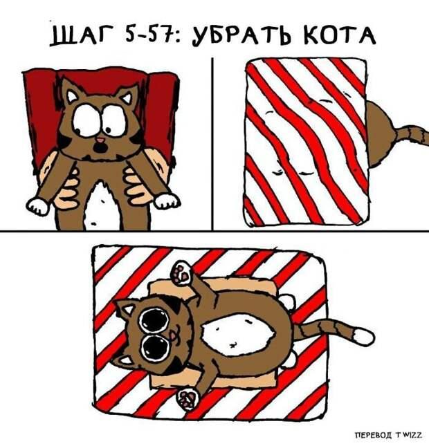 Как завернуть подарки, если у вас есть кот? Пошаговая инструкция от американского художника инструкция, кот, подарок, прикол, рисунок, художник, юмор