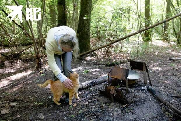 Мангал, на котором готовили еду Фото: Андрей АБРАМОВ