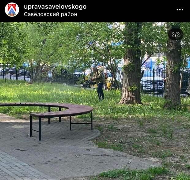В парках Савеловского провели обработку от клещей