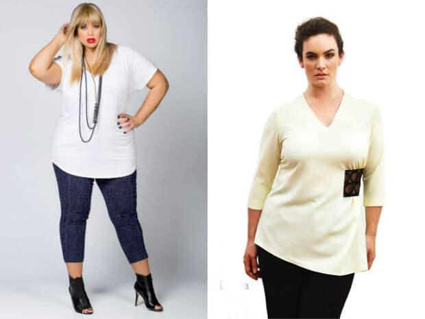 Модные блузки для полных осень-зима 2016-2017 Dea London, Harlow