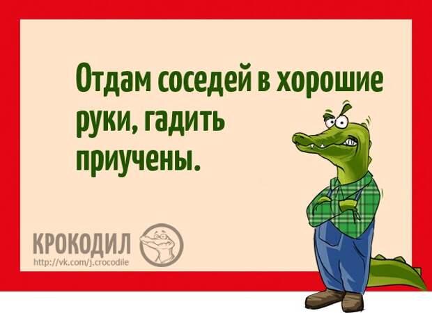 https://pp.vk.me/c626217/v626217611/22915/wh3geqt8oEI.jpg