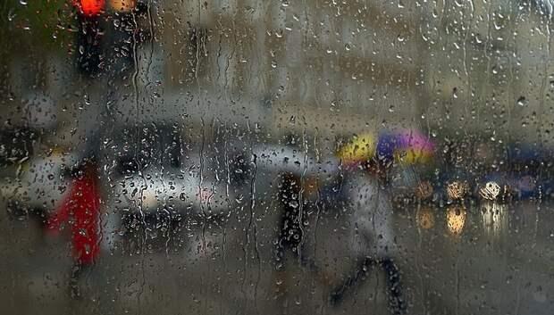 Дождь и до плюс 13 градусов ожидается в четверг в Подольске