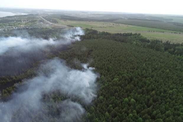 Названа предварительная причина лесного пожара у деревни Поварёнки в Удмуртии