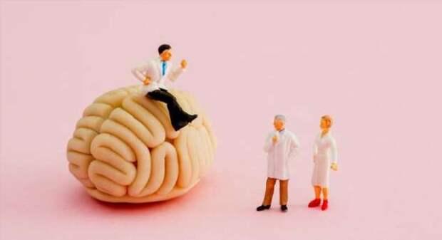 Унылые клетки мозга — обнаружены структуры, отвечающие за пессимизм (4 фото)