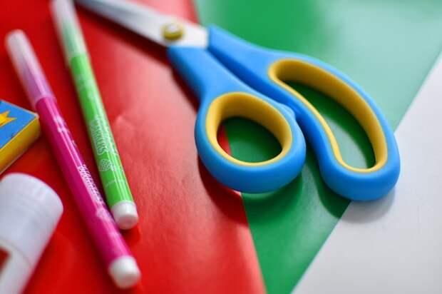 Библиотека №64 в Путевом проезде подготовила для малышей онлайн – занятие по аппликации
