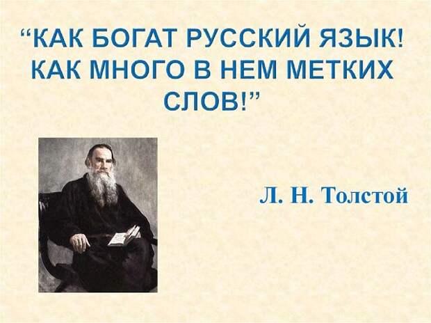 *Кое-что о русском языке*