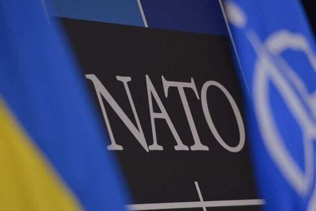 На Украине хотят обменять «СП-2» на членство в НАТО