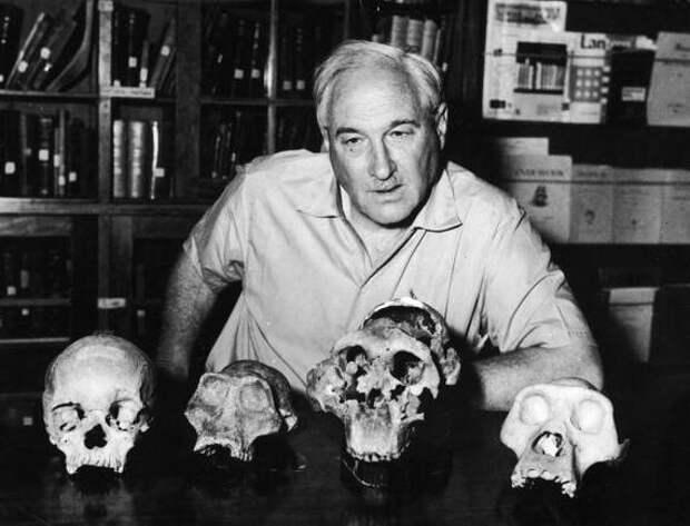 Луис и Мэри Лики и династия палеоантропологов Антропогенез, Ангелы Лики, приматы, биография, наука, длиннопост