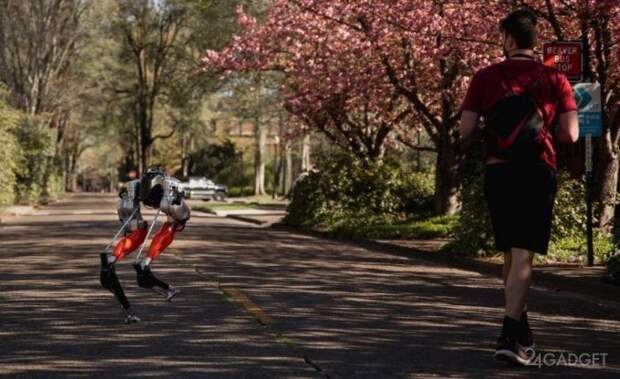 Робот Cassie установил рекорд, пробежав 5 км