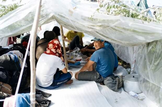 5 фото узбекских мигрантов, которые из-за карантина застряли в поле в 37-градусную жару