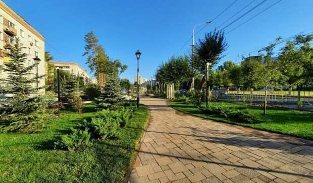 2000 растений высадили на проспекте Жукова в Волгограде
