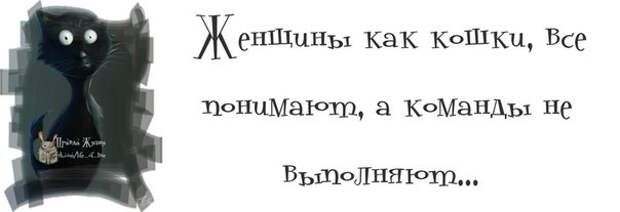 1371065232_frazki-13 (604x207, 40Kb)