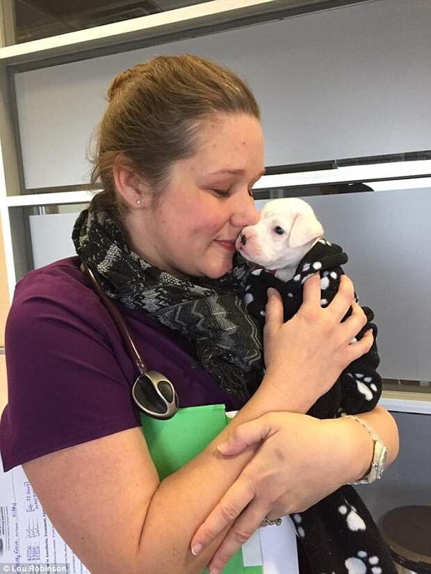 Невероятная история милого щенка без передних лап, который так отчаянно хотел жить…
