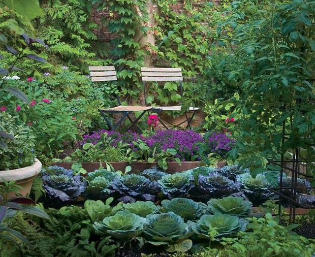 Огород и зона отдыха