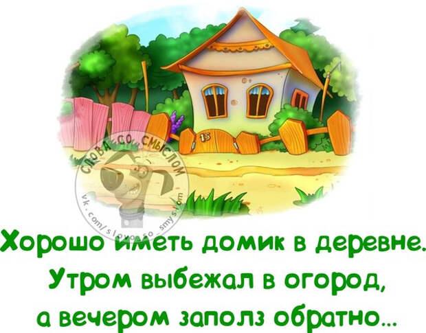 1403119351_frazki-8 (604x473, 233Kb)