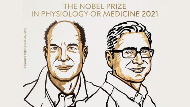 Нобелевку дали ученым, раскрывшим секрет мятной конфетки