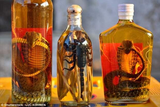 Вина из змей и скорпионов