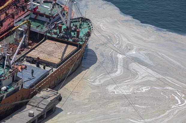 Турция собрала в водах Мраморного моря тысячи кубометров «морской слизи»