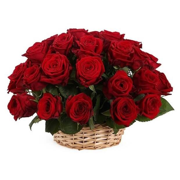 Поздравляем Евгения Алексеева с Днём рождения!