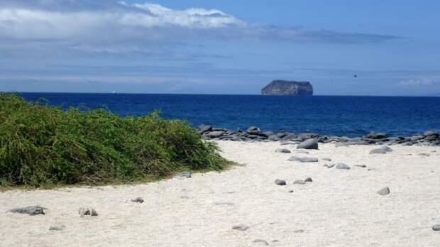 Знаменитая Арка Дарвина рухнула на Галапагосских островах
