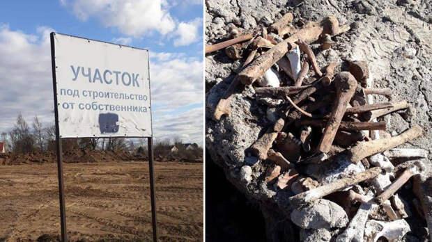 Скелеты людей нашли возле коттеджного поселка в Ленобласти