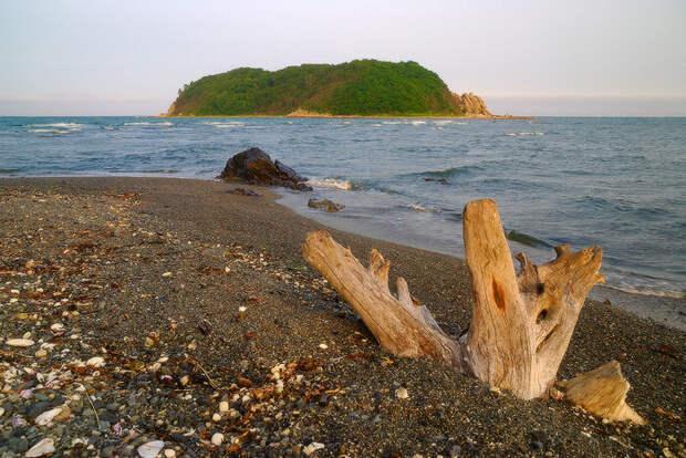 Таинственный остров Петрова