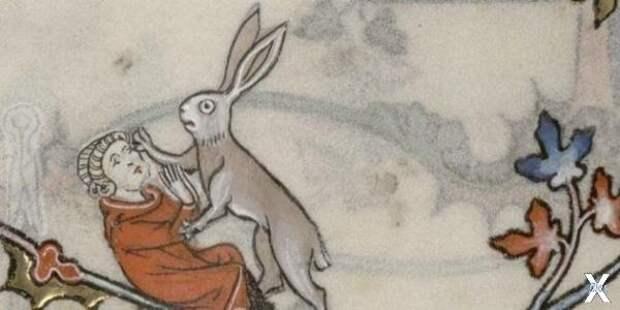 Заяц нападает на человека, Бревиарий ...